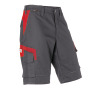 Shorts Innovatiq 2430, anthrazit/mittelrot
